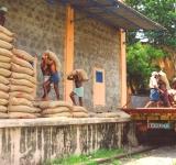 dudes with grain fci - SC-WIDTH 160px_HT 150px